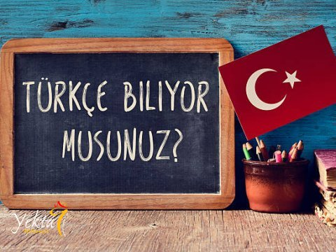 Как быстро можно выучить турецкий язык?