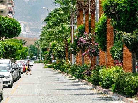 Как иностранцу купить автомобиль в Турции?
